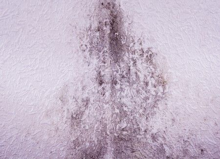Bournemouth Rising Damp Solutions
